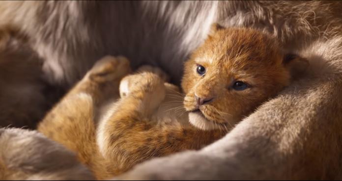 simba filhote em O Rei Leão