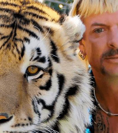 A Máfia dos Tigres