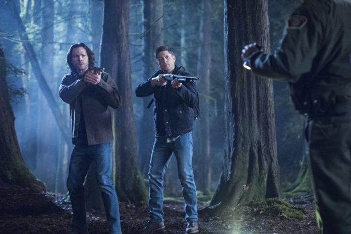 supernatural warner 14a temporada