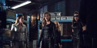 arrow 7x18 warner lost canary (9)