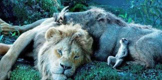timão e pumba e simba o rei leão